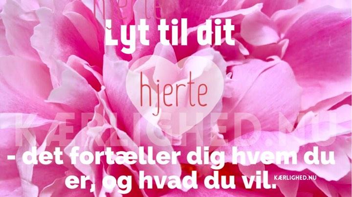 citater om hjertet hjerte   TOP Citater og ordsprog, Kærlighed.nu   Din online citat  citater om hjertet