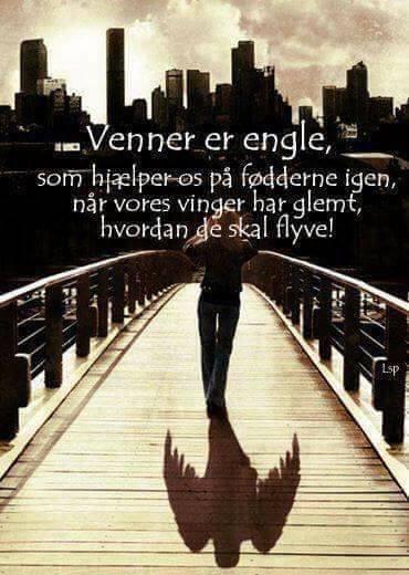 citater om engle Venner   Danmarks største udvalg af Danske Citater og ordsprog citater om engle
