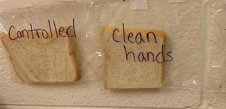 Læreren viser børnene bakteriefyldt eksperiment - derfor er det så vigtigt at vaske hænder!