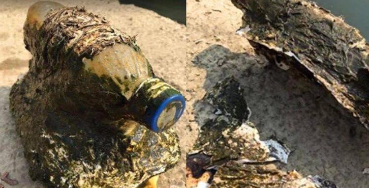 Han ser pludseligt en flaske i havet bevæge sig mod strømmen - Da han kigger nærmere får han et chok!