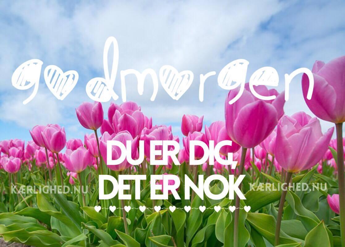søde godmorgen citater Godmorgen   Danmarks sødeste citater og budskaber søde godmorgen citater