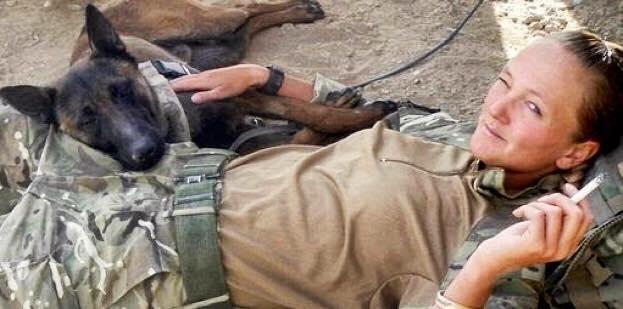 Disse tre schæferhunde har reddet tusindvis af liv - nu skal de aflives, på grund af de skal pensioneres