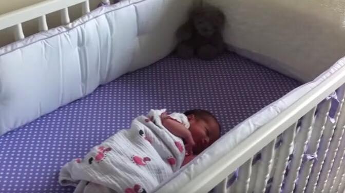 Hund hører nyfødt græde for aller første gang, så fanger moren reaktionen på film