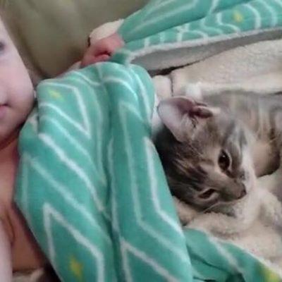 Sødeste video nogensinde - Lille pige ligger på sofaen og klapper familiens killing