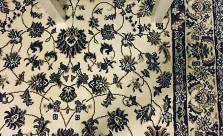 Kan du finde mobilen på dette tæppe? - de færreste kan!